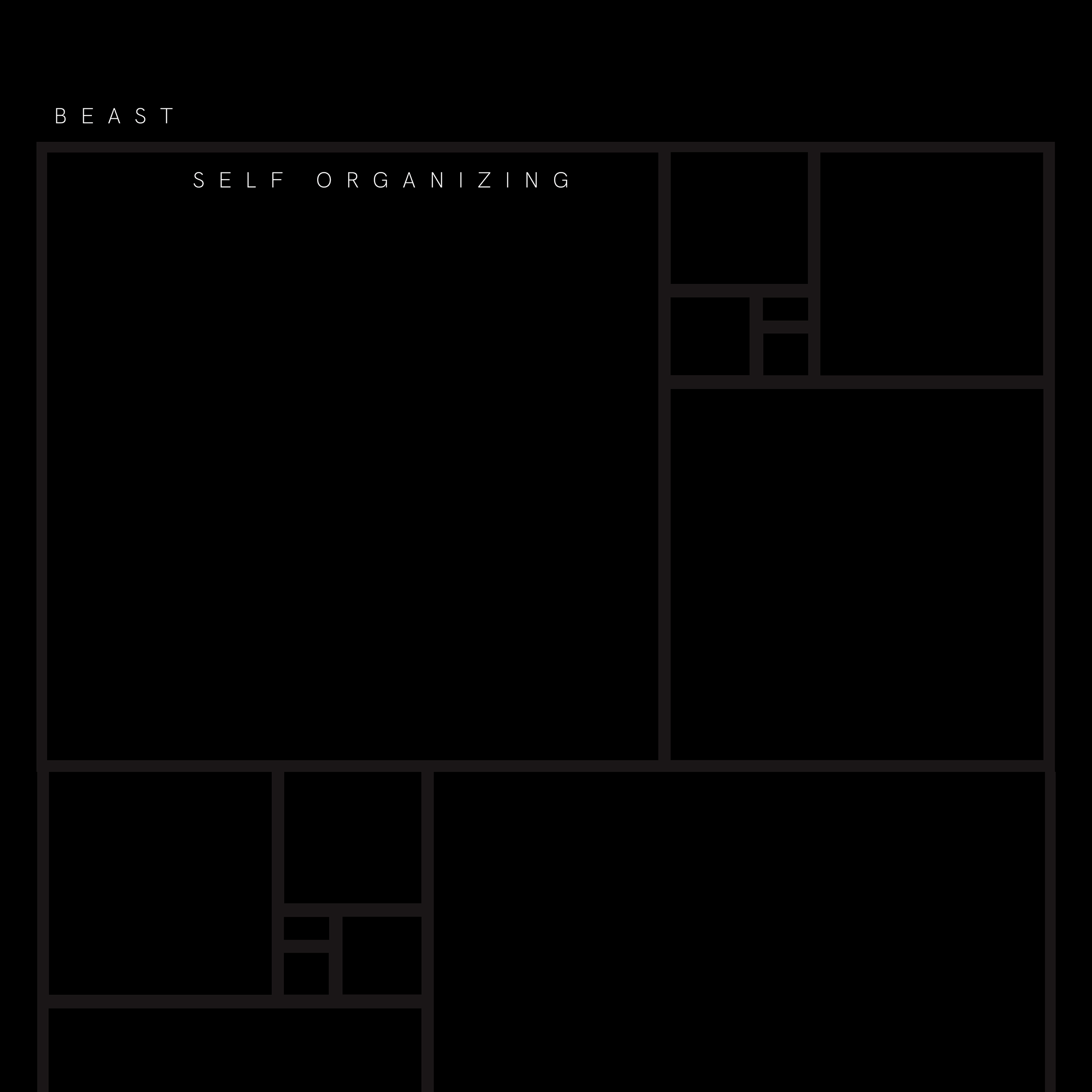 Noel Young Studio Self Organizing Released